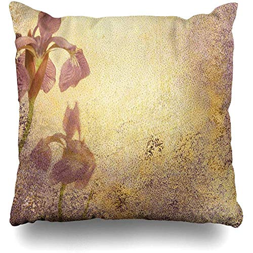 (Throw Pillow Cover Botanical Purple Royal Iris Abstract Stationary Flowery Watercolor Aged Announcement Antique Bloom Home Decor Cushion Case Square Size 18 x 18 Inches Zippered Cases)