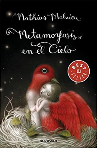 Metamorfosis en el cielo / Metamorphosis In The Sky: - by Mathias Malzieu (2013-02-07): Amazon.com: Books