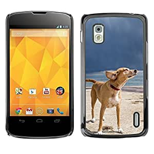 YOYO Slim PC / Aluminium Case Cover Armor Shell Portection //Cool Summer Dog Chilling //LG Google Nexus 4
