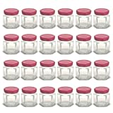 mini canning lids - 1.5 oz Hexagon Mini Glass Jars with Red Lids and Labels (Pack of 24)