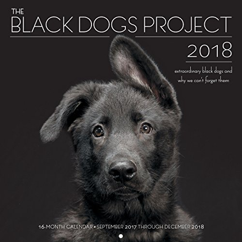 - The Black Dogs Project 2018: 16 Month Calendar Includes September 2017 Through December 2018