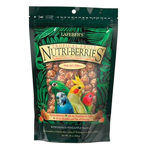 (LAFEBER'S Tropical Fruit Nutri-Berries Pet Bird Food, Made with Non-GMO and Human-Grade Ingredients, for Cockatiels Conures Parakeets (Budgies) Lovebirds, 10 oz)