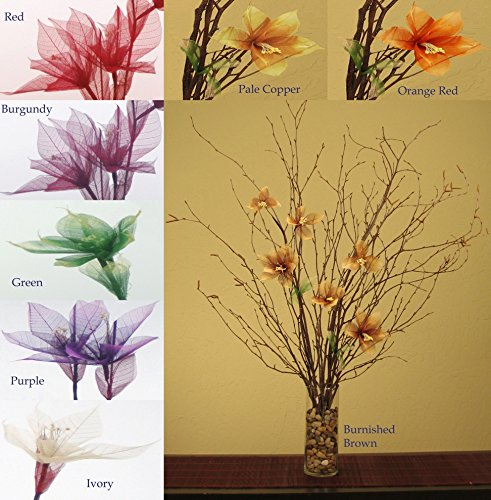 Green Floral Crafts Natural Birch Branches & Ivory Star Lilies Combo Pack (Vase Not Included) ()