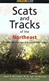 Scats and Tracks of the Northeast, James C. Halfpenny, 158592105X
