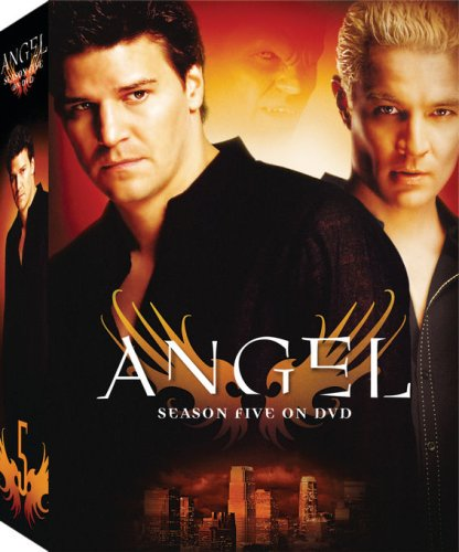 Angel: Season 5 (Slim Packaging)
