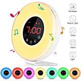 Wake Up Light Sunrise Alarm Clock Sunset Simulation Night Light with Brightness Automatic Adjustment,6 Nature Sounds,FM Radio,Touch Control With Snooze Function,7 Color Night Light and USB Charge
