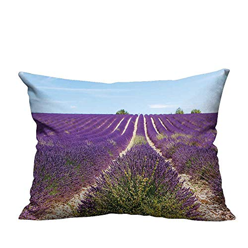 YouXianHome Decorative Throw Pillow Case Beautiful Blooming Lavender Fields Near Valensole in Provence,France Rows of Purple Flowers Ideal Decoration(Double-Sided Printing) 12x16 inch ()
