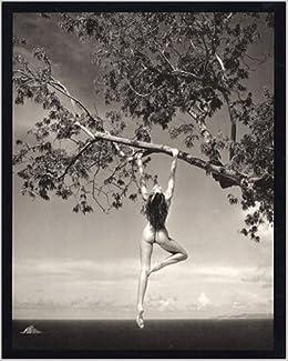 Amazon Com Patrick Demarchelier Photographs 9780821225141 Demarchelier Patrick O Brien Glenn Books