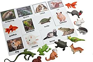 Montessori Pet Animal Match - Miniature Pet Animal Toy Figurines with Matching Cards - 2 Part Cards. Montessori learning toy, language materials Busy Bag Activity