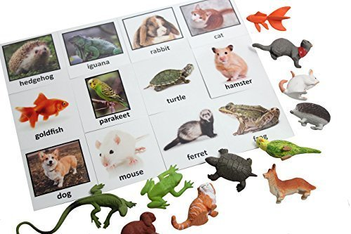 Montessori Pet Animal Match - Miniature Pet Animal Toy Figurines with Matching Cards - 2 Part Cards. Montessori learning toy, language materials Busy Bag Activity ()