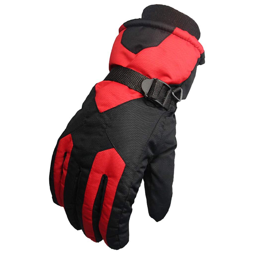 DSADDSD Handschuhe, Herren und Damen Winter, Radfahren Handschuhe, Wasserdichte Outdoor-Ski-Handschuhe