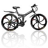 Outroad Mountain Bike 6 Spoke 21 Speed 700CC Double Disc Brake Folding Bike