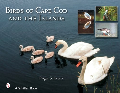 Birds Cape Cod (Birds of Cape Cod and the Islands)