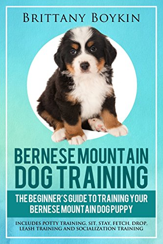 Bernese Mountain Dog Training: The Beginner's Guide to Training Your Bernese Mountain Dog Puppy: Includes Potty Training, Sit, Stay, Fetch, Drop, Leash Training and Socialization Training