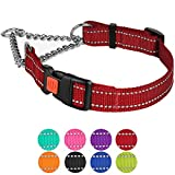 CollarDirect Reflective Martingale Collars for Dogs Training Chain Pet Choke Collar with Buckle Red Pink Mint Green Orange Blue Black Purple (L, Red)