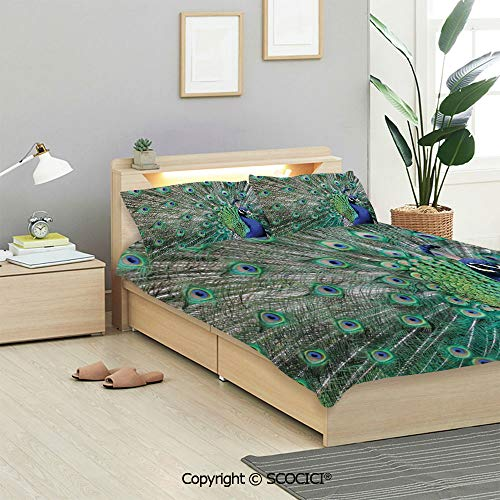 SCOCICI Peacock Bedding Sets 3 Pieces(1 Duvet Cover 2 Pillow Shams) Peacock Displaying Elongated Majestic Feathers Open Wings Picture Duvet Cover Sets for Kids/Twin/Single All Seasons