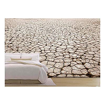 With Expert Quality, Fascinating Creative Design, Cracked Parched Earth in The Future
