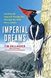 Front cover for the book Imperial Dreams: Tracking the Imperial Woodpecker Through the Wild Sierra Madre by Tim Gallagher