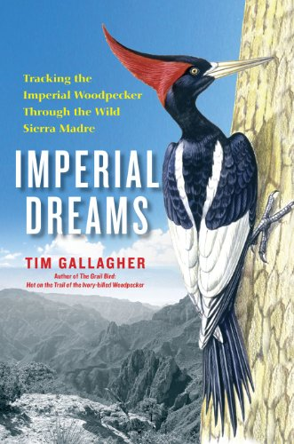 Imperial Dreams: Tracking the Imperial Woodpecker Through the Wild Sierra Madre