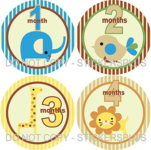 Baby Boy Month Stickers Monthly Baby Milestone Stickers Jungle Safari Animal Elephant Bird Giraffe Lion Blue Cream Yellow Brown (Giraffe Lion Bird)