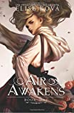 Air Awakens (Air Awakens Series Book 1): Volume 1
