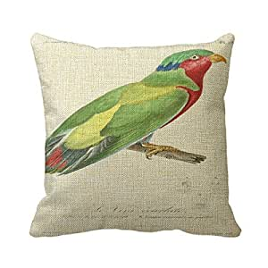 """Retro 16""""X 16"""" (Twin Sides) Pillowcase Cushion Cover French 1831 Parrot Green Holiday Throw Pillow Square Decorative Throw Pillow Cover"""