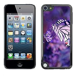 "For Apple iPod Touch 5 , S-type Naturaleza de la mariposa Macrp"" - Arte & diseño plástico duro Fundas Cover Cubre Hard Case Cover"