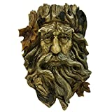 Bits and Pieces – Old Man Tree Hanging Planter-Polyresin Sculpture Made to Look Like Wood – Suitable to Hang Indoors or Outdoors Review