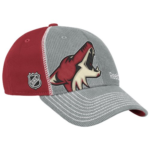NHL Phoenix Coyotes 2012 Draft Hat, Grey, -