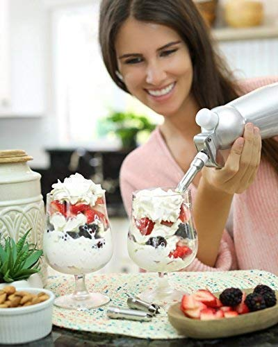 Buy whip cream dispenser