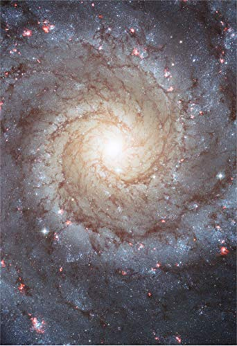 , LLC Space Poster of the M74 Galaxy Fine Art Print ()