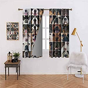 Dog Lover Decor Collection Rod Pocket Blackout Drapes 38W x 45L,Set of 2 Panels Dogs Studio Shot Chihuahua Chow Chow Cocker Spaniel Poodle Purebred Sheepdog Energy Efficient, Room Darkening Brown Blac 38