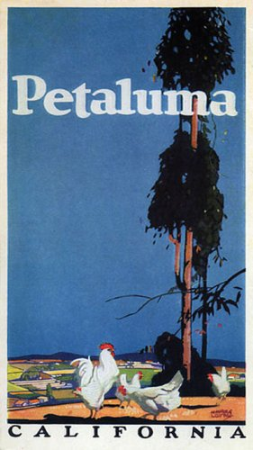 Chicken Farm Petaluma California Vintage Poster Repro