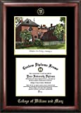 Campus Images ''College of William and Mary Embossed Diploma'' Frame with Lithograph Print, 10'' x 13'', Gold