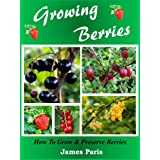 Growing Berries: How To Grow & Preserve Strawberries, Raspberries, Blackberries, Blueberries, Gooseberries, Redcurrants,Blackcurrants & Whitecurrants.