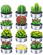 KisSealed 12 Pieces Succulent Cactus Candles Handmade Cactus Tealight Candles for Spa Home Birthday Party Wedding Decoration Gifts