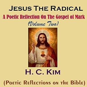 Jesus the Radical Audiobook
