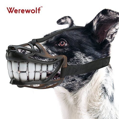 Wrewo (Scary Smile Costume)
