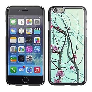 FECELL CITY // Duro Aluminio Pegatina PC Caso decorativo Funda Carcasa de Protección para Apple Iphone 6 Plus 5.5 // Sky Rose Flowers Spring Nature Branches