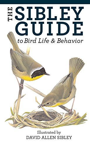 The Sibley Guide to Bird Life and Behavior (Sibley Guide To Bird Life And Behavior)