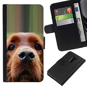 All Phone Most Case / Oferta Especial Cáscara Funda de cuero Monedero Cubierta de proteccion Caso / Wallet Case for LG G2 D800 // Golden Retriever Dog Muzzle Brown