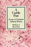 img - for A Usable Past: Essays in European Cultural History by William J. Bouwsma (1990-06-27) book / textbook / text book