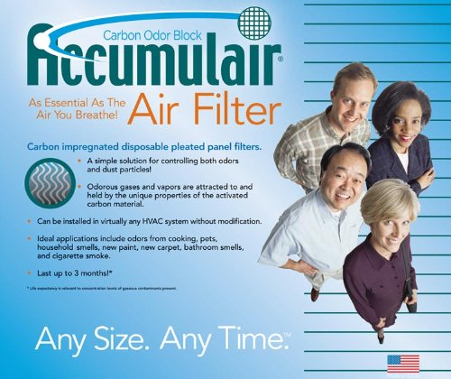 20x20x1 Bryant Carbon Air Purifier Filters (Aftermarket)