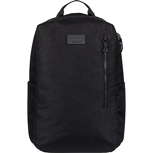 Pacsafe QUIKSILVER PACSAFE Anti Theft Backpack product image