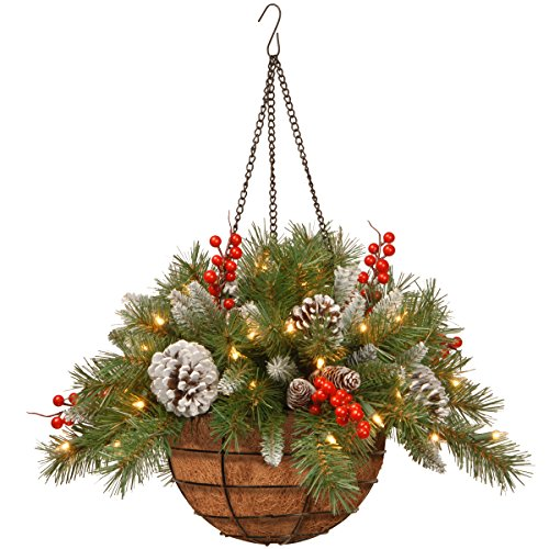 National Tree 20 Inch Frosted Berry Hanging Basket with Red Berries, Cones and 50 Battery Operated Warm White LED Lights -