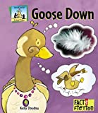 img - for Goose Down (Sandcastle: Fact & Fiction (Hardcover)) book / textbook / text book