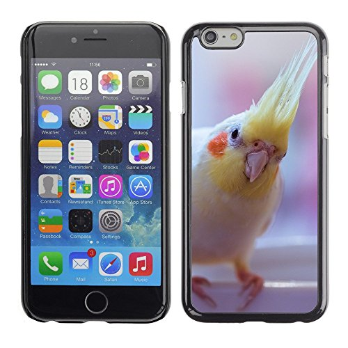 "Premio Sottile Slim Cassa Custodia Case Cover Shell // F00000084 oiseau // Apple iPhone 6 6S 6G PLUS 5.5"""