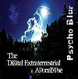 The Digital Extraterrestrial Apocalypse