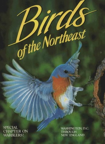 Birds of the Northeast: Washington, D.C. Through New England (Northeast Fact)