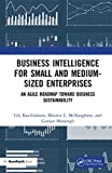 Business Intelligence for Small and Medium-Sized Enterprises: An Agile Roadmap toward Business Sustainability